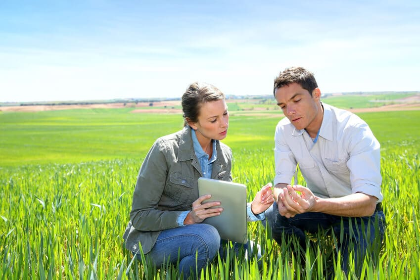 Agriculture market research experts on the field